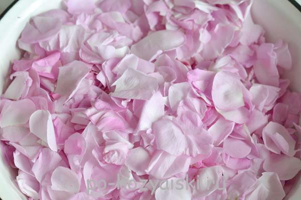 Что приготовить из лепестков розы