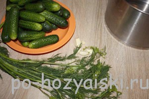 овощи с укропом