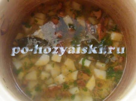 лисички в супе