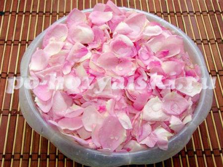 розовые лепестки